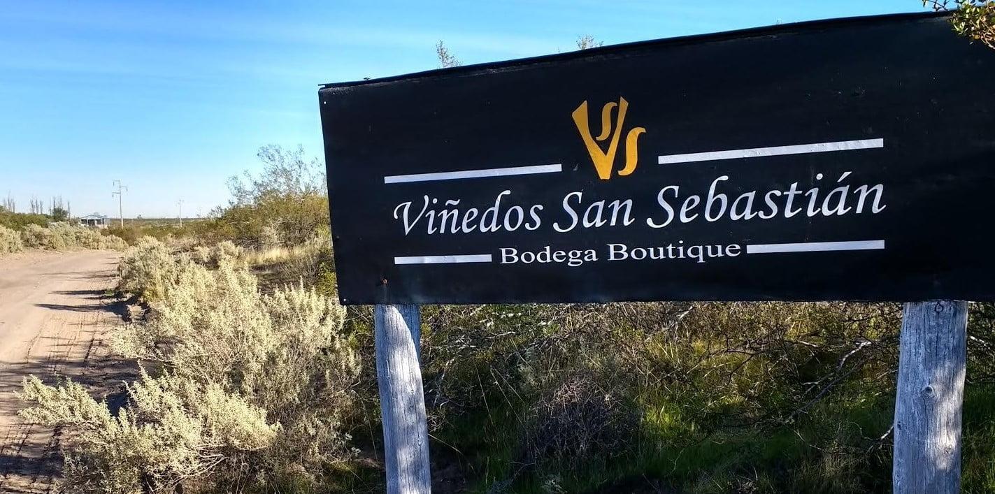VIÑEDOS DE SAN SEBASTIÁN