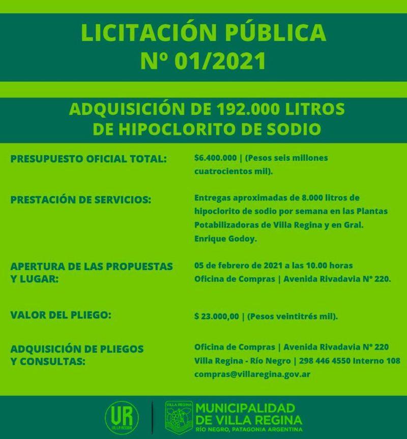 Licitación pública Nº 01/2021