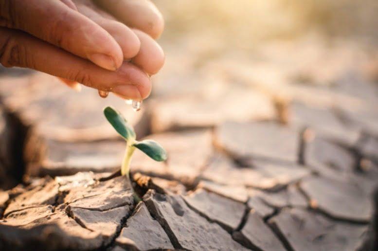 Día Mundial del Agua: crear conciencia sobre su importancia para la vida