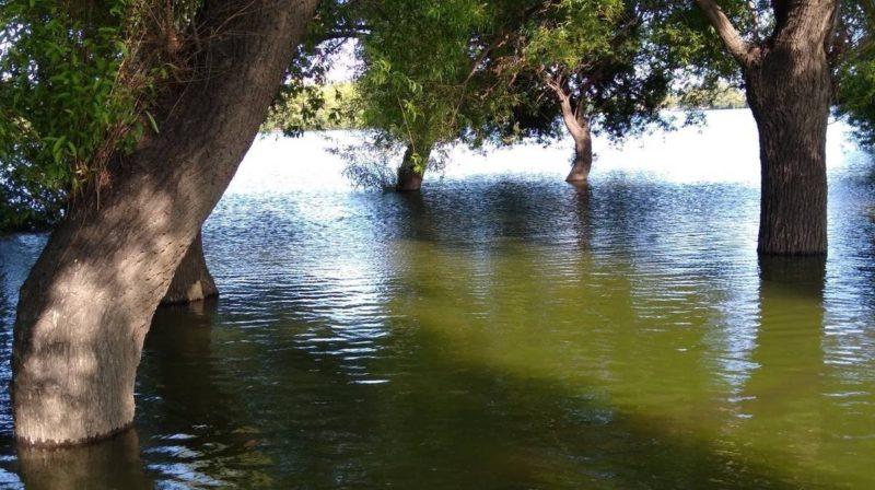 Precauciones ante el aumento del caudal del río Negro